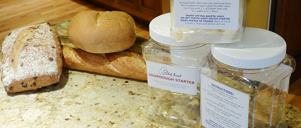 sourdough-starter-banner