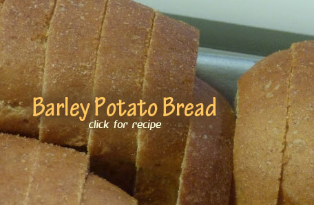 Barley Potato Bread Recipe