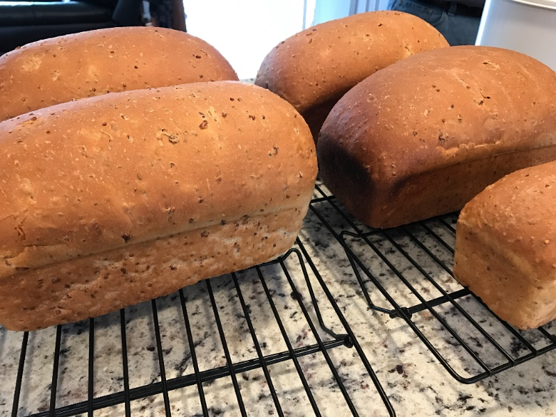 Red Rice Chia Bread